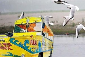 Badal's dream project Harike Cruise fails to deliver