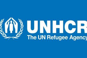 Critical gap in education for refugee girls: UNHCR