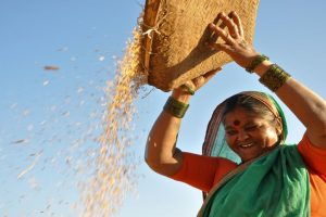 Centre directs states to spend 30% agri-fund on women farmers
