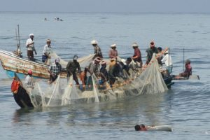 Sri Lankan Navy arrests 8 Indian fishermen