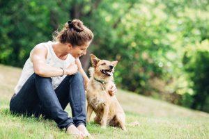 Understanding your pets