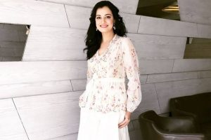 Stereotypes exist in all professions: Dia Mirza