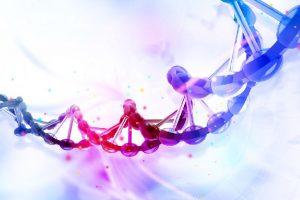 Heart disease preventing gene identified in Greeks