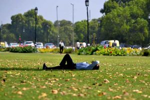 Beijing to create 15 new parks