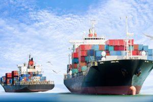 India lifts ban on bulk export of major edible oil