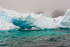 Global warming may explain Arctic's green ice