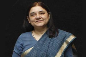 New rules would ensure cattle is not ill-treated: Maneka Gandhi