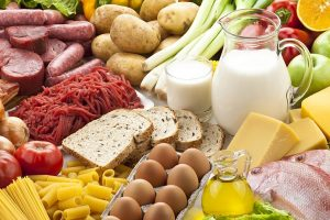 All about the protein foods – Incredibly important bodybuilding nutrient