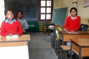'Encourage states to teach Hindi in schools, don't impose it'