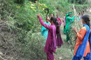 Himachal to continue cleanliness, cannabis eradication drive