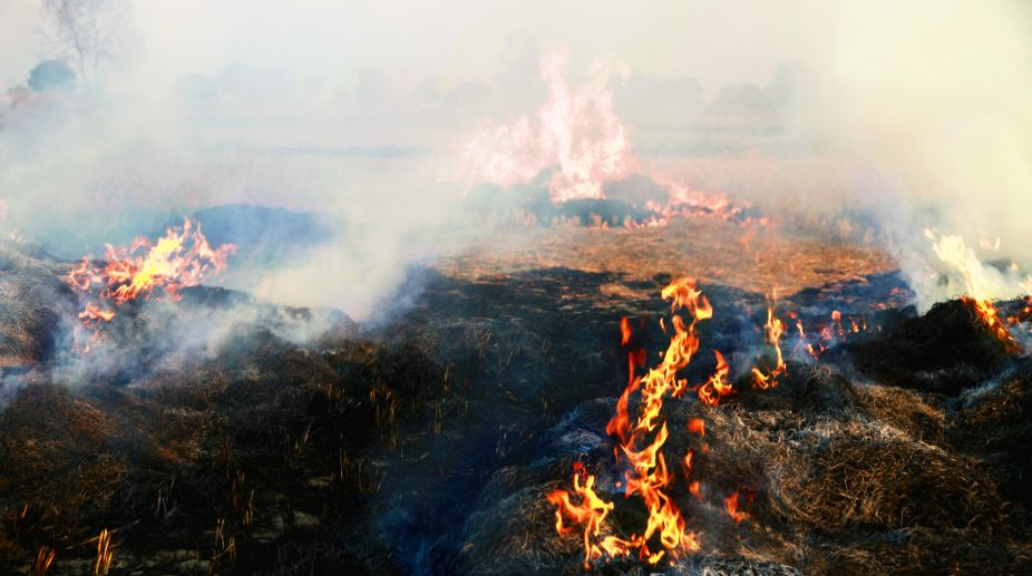 Rajya Sabha, stubble burning, farmers, Central government