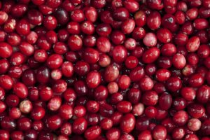 World cranberry leader Ocean Spray eyes Indian market