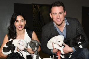 Split up: Channing Tatum, Jenna Dewan part ways after 9 years of marriage