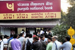PNB Q3 net up 11 per cent at Rs 230 cr