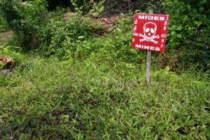 11 landmines seized in Jharkhand