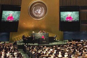 India decries efforts derailing UN Security Council reforms