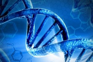 Gene delivery system shows promise in vision loss prevention