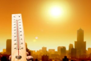 Hot weather conditions continue in Punjab, Haryana