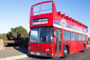Now, savour Goa's tourist hotspots with hop-on, hop-off buses