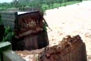 Goa bridge collapse: Divers resume search operation