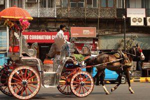 Mumbai's 'Victoria' carriage operators to be rehabilitated
