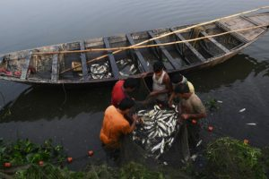 Cargo vessel hits fishing boat off Kerala, 2 killed