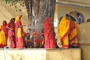 Vat Savitri Puja celebrated as women pray for longevity of husbands