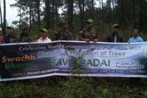 Tree plantation marks World Environment Week in Manipur's Tamenglong