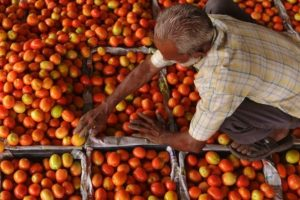 Tomato prices soar to Rs.60-70 per kg, govt keeping a tab