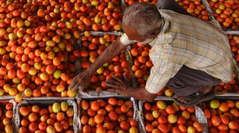 Tomato prices, Azadpur mandi, Delhi retail markets
