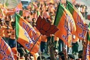 Congress ignores fruit growers: BJP