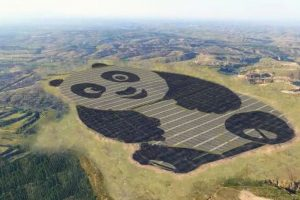 World's first panda-shaped solar farm built in China