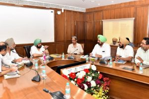Crop diversification : Punjab to follow horti-forestry models