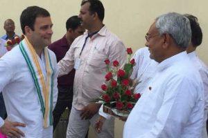 Nitish Kumar meets Rahul Gandhi in Delhi