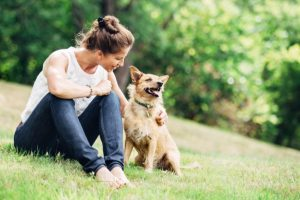 Soon, pet translators may help you talk to animals