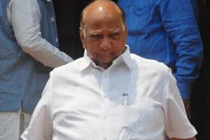 Sharad Pawar declines Sonia's offer to be presidential candidate: NCP