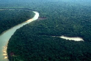 Brazil opens Amazon national reserve for mining