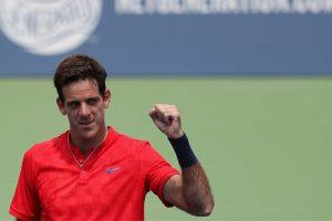 Cincinnati Open: Juan Martin del Potro stuns Tomas Berdych