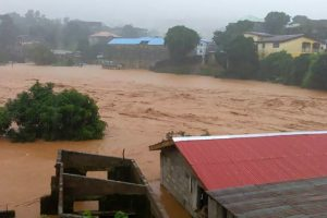 286 bodies recovered in Sierra Leone mudslide