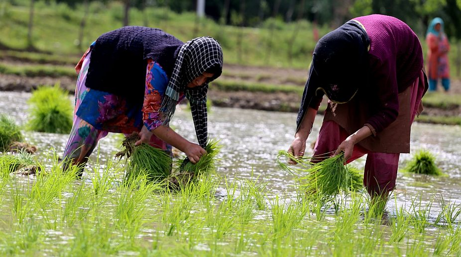 Shimla farmers, climate change, farm profits