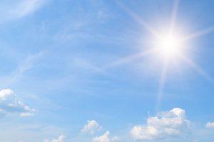 Sunny Wednesday in Delhi