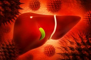 Liver inflammation may raise risk of heart diseases