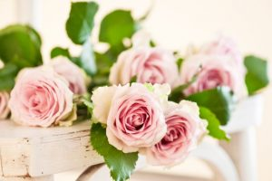 Health benefits of rose petals