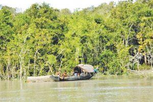 Why saving Sundarban matters for Kolkata