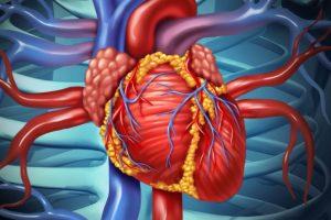 Erectile dysfunction may signal heart disease risk