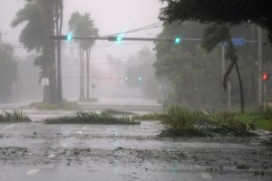 Hurricane Irma: Death toll jumps to 12 in Florida, says official