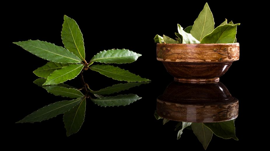 Top benefits of tejpatta or bay leaves