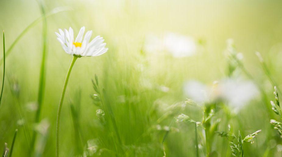 Take three steps closer to nature