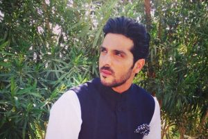 Television is very demanding: Zayed Khan