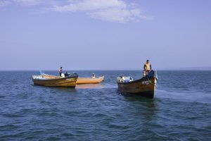 Over 2,000 TN fishermen chased away by SL Navy, nets cut off